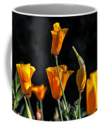 From Darkness Into The Light Coffee Mug