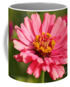 Fuchsia Pink Zinnia From The Whirlygig Mix Coffee Mug
