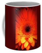 Gerbera Daisy Detail Coffee Mug