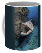 Giant Grouper, Great Barrier Reef Coffee Mug