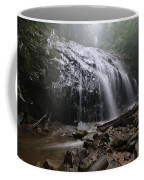 Glen Burney Falls Coffee Mug