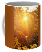 Golden Days Of Autumn Coffee Mug
