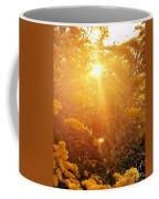 Golden Days Of Autumn Coffee Mug