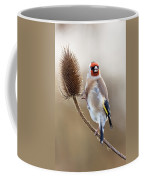 Goldfinch On Teasle Coffee Mug