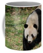 Gorgeous Black And White Giant Panda Bear Walking Coffee Mug