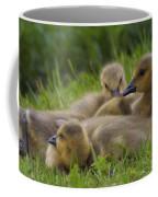Goslings Coffee Mug
