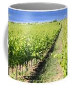 Grapevines In A Vineyard Coffee Mug