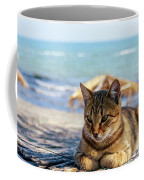 Gray Cat On The Background Of The Sea 1 Coffee Mug