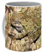 Gray Tree Frog Coffee Mug