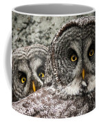 Great Grey Wake Up Coffee Mug