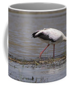Great Rift Birds Coffee Mug
