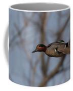 Green-winged Teal Flies Over Coffee Mug