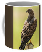 Greeting Dawn Coffee Mug