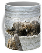 Grey Water At Window Rock Coffee Mug