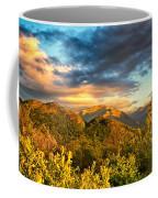 Guest Coffee Mug