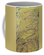 Haleakala Highway Coffee Mug
