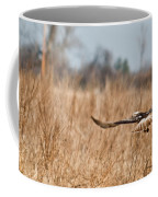 Hawk Soaring Over Field Coffee Mug