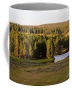 Hayden Valley 2 Coffee Mug