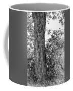 Heaven's Tree Coffee Mug
