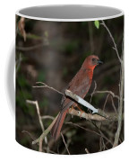 Hepatic Tanager At The Coba Ruins Coffee Mug