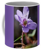Hepatica 4 Coffee Mug