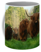 Highland Cows Coffee Mug
