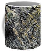 History Of Earth 5 Coffee Mug