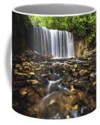 Hoggs Falls Coffee Mug