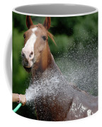 Horse Bath II Coffee Mug