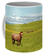 Horse Grazing Coffee Mug