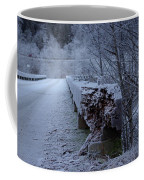Ice Bridge Coffee Mug