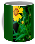 Illumination Coffee Mug by Frozen in Time Fine Art Photography