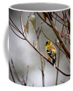 Img_0001 - American Goldfinch Coffee Mug