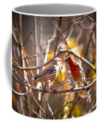 Img_0001 - House Finch Coffee Mug