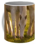 In The Golden Light Coffee Mug