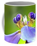 Iris Flower Coffee Mug by Heiko Koehrer-Wagner