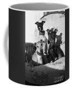 Italian Greyhounds In Black And White Coffee Mug