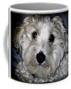 Jasper 0049 Coffee Mug