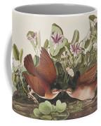 Key West Dove Coffee Mug