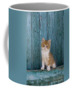 Kitten On A Greek Island Coffee Mug