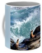 La Jolla Cove Coffee Mug