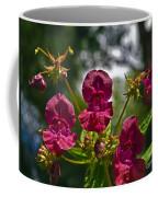 Lady Slipper Orchid Dan146 Coffee Mug