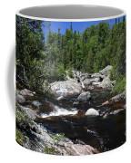 Lake Superior Provincial Park Coffee Mug
