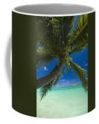 Lanikai Palm Tree Coffee Mug