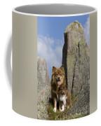 Lapinko�ra Dog And His Pup Coffee Mug