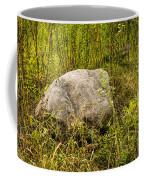 Large Rock And Purple Asters Coffee Mug