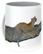 Leopard Panthera Pardus Sitting Coffee Mug