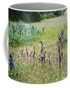 Lilac Flower In Green Canvas Spring Has Arrived 2 Coffee Mug