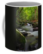 Little Pigeon River Coffee Mug