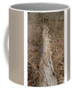 Log In The Woods Coffee Mug